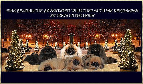 An den Beitrag angehängtes Bild: http://www.sues-pekingesen.ch/z/advent.jpg